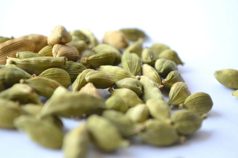 Cardamom Suppliers in India, Cardamom Exporters in India