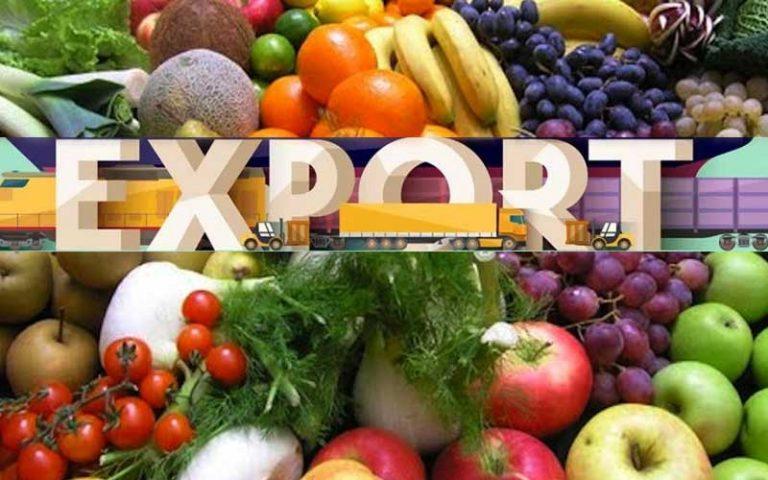 Vegetables Exporters in Tamilnadu