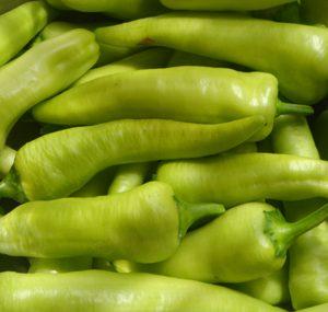 Long Capscicum Exporter in tamilnadu